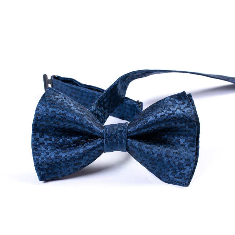 Papion barbati Italian blue