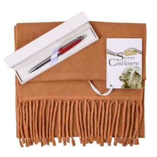 Gift Cashmere Foulard Camello and Pen bordo Nina Ricci
