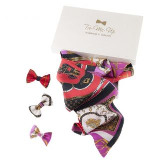 Milady scarf and bow clip gift