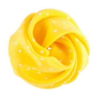Pretty Woman hair rose on yellow