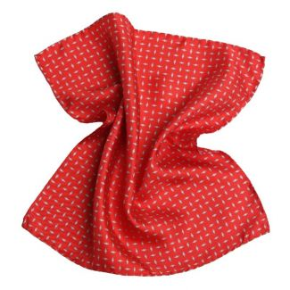 Gift: Smart Outfit silk handkerchiefs